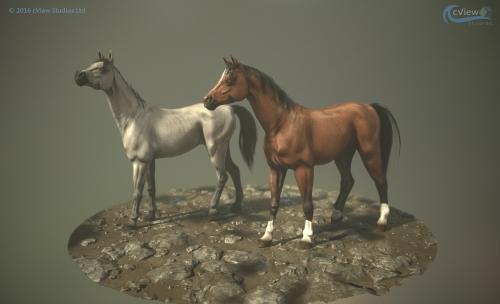 0160_Horses_new